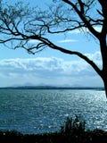 Un paisaje marino azul Imágenes de archivo libres de regalías