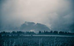 Un paisaje monocromático hermoso, abstracto de la montaña en tonalidad azul foto de archivo libre de regalías