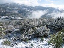 Un paisaje nevoso del campo con las montañas Imagen de archivo libre de regalías