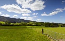 Un paisaje por completo del verde Fotografía de archivo
