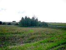 Un paisaje rural embotado con un campo, árboles y un camino en un día soleado brillante imagen de archivo libre de regalías