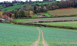 Un paisaje rural inglés en las colinas de Chiltern Imagen de archivo