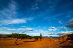 Un paisaje seco del desierto Imagen de archivo
