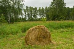 Un pajar grande del heno seco a la hora de la cosecha y rodado fotografía de archivo libre de regalías