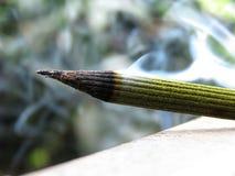 Un palillo ardiente del incienso Imagen de archivo