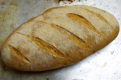 Un pan del pan del kamut en un molde para el horno foto de archivo