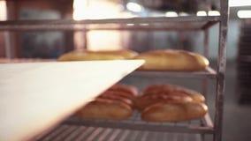 Un panadero de sexo masculino en un uniforme blanco saca del pan cocido del horno apenas, lugares él en la bandeja Ciérrese encim almacen de metraje de vídeo