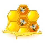 Un panal con las abejas Imágenes de archivo libres de regalías