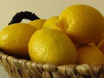 Un panier des citrons jaunes mûrs juteux Riches en bonne santé de fruit tropical de vitamine C Citrons organiques sains images stock