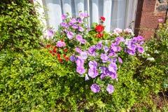 Un panier des fleurs roses et rouges lumineuses accroche sur la fenêtre d'une maison dans un bâtiment antique dans les Frances, e Photographie stock