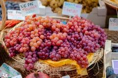 Un panier des raisins frais à vendre dans les Frances image libre de droits