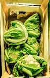 Un panier en bois complètement des légumes Photo stock