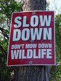 Un panneau routier boulonné à un arbre exigeant des personnes de ralentir et mettre le ` t fauchent vers le bas la faune photos libres de droits