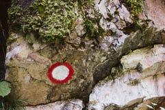 Un panneau routier dans la forêt pour la traînée photographie stock