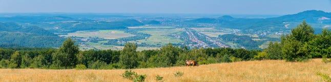 Un panorama magnifico della città che sta in una valle verde della montagna fra i pendii dell'allungamento boscoso al Immagine Stock Libera da Diritti