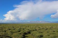 Un pantano en el valle de la montaña Foto de archivo libre de regalías