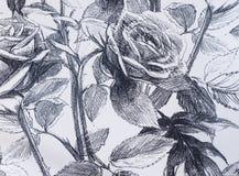Un papier peint de fond avec des fleurs Photos stock