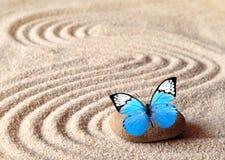 Un papillon vif bleu sur une pierre de zen avec des modèles de cercle dans le sable de grain image libre de droits