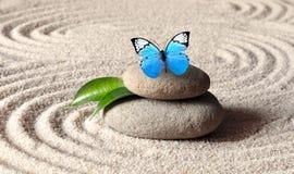 Un papillon vif bleu sur une pierre de zen avec des modèles de cercle dans le sable de grain photo stock