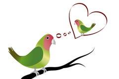Un pappagallo nell'amore Fotografia Stock Libera da Diritti