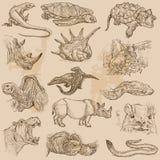 Un paquete dibujado mano del vector - ANIMALES Fotografía de archivo libre de regalías