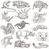 Un paquete dibujado mano, línea arte - animales Foto de archivo libre de regalías