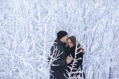 Un par cariñoso en un paseo del invierno Historia de amor de la nieve, magia del invierno Hombre y mujer en la calle escarchada E foto de archivo