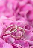 Pares de anillos de bodas en las flores Foto de archivo libre de regalías