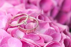 Pares de anillos de bodas en las flores Foto de archivo