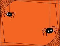 Un par de arañas lindas que hacen girar una frontera del web Imagen de archivo