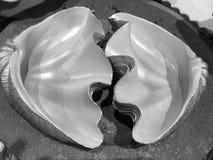 Un par de cáscara artificial fotografía de archivo libre de regalías