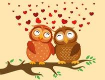 Un par de mochuelo lindo que se sienta en una rama Búhos en corazones del amor Fotografía de archivo