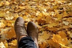 Un par de pies en un fondo de las hojas de arce amarillas del otoño foto de archivo libre de regalías