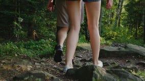Un par de turistas están caminando a lo largo de una trayectoria de la montaña cubierta con las raíces de árboles grandes Visión  metrajes