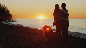 Un par joven con un sollozo admirará la puesta del sol hermosa sobre el lago Ontario Foto de archivo