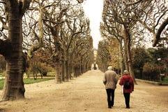 Un par mayor que camina a lo largo del parque en París, preguntándose en un callejón entre la alta sepia de los árboles fotografía de archivo
