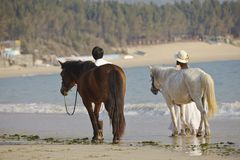 Un par que camina en la playa Foto de archivo libre de regalías