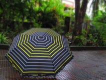 Un parapluie humide pendant la mousson photographie stock libre de droits