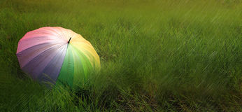 Un parapluie sur le champ vert dans le jour pluvieux Image stock