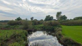 Un parc à fin septembre, vue d'une rivière Image stock