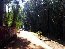 Un parc d'état différent à Nicosie de la Chypre est le parc linéaire Photographie stock libre de droits