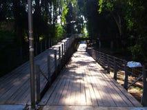 Un parc d'état différent à Nicosie de la Chypre est le parc linéaire Image stock