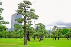 Un parc devant le palais impérial, Tokyo, Japon images stock