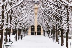 Un parco di Parigi sotto la neve Immagine Stock