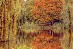 Un parque del otoño con el lago Fotos de archivo