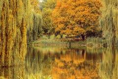 Un parque del otoño con el lago Fotografía de archivo libre de regalías
