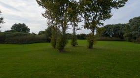 Un parque en finales de septiembre imagen de archivo