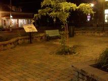 Un parque en la noche fotografía de archivo