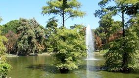 Un parque en Madrid almacen de video