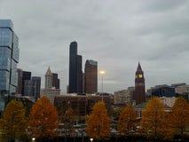 un parque en otoño con los árboles y los rascacielos fotos de archivo libres de regalías
